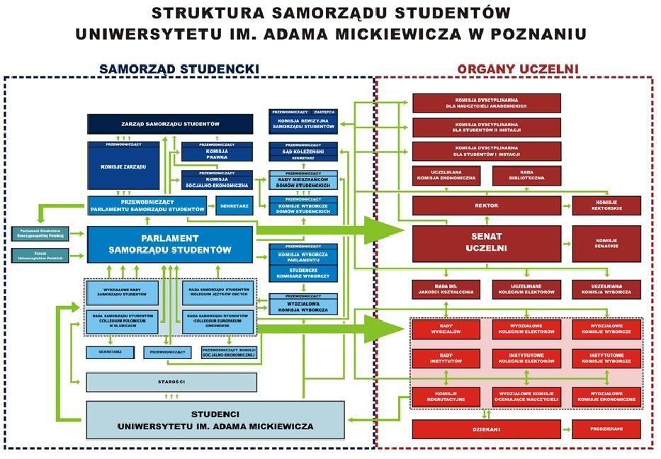 Infografika Struktury Samorządu Studentów UAM